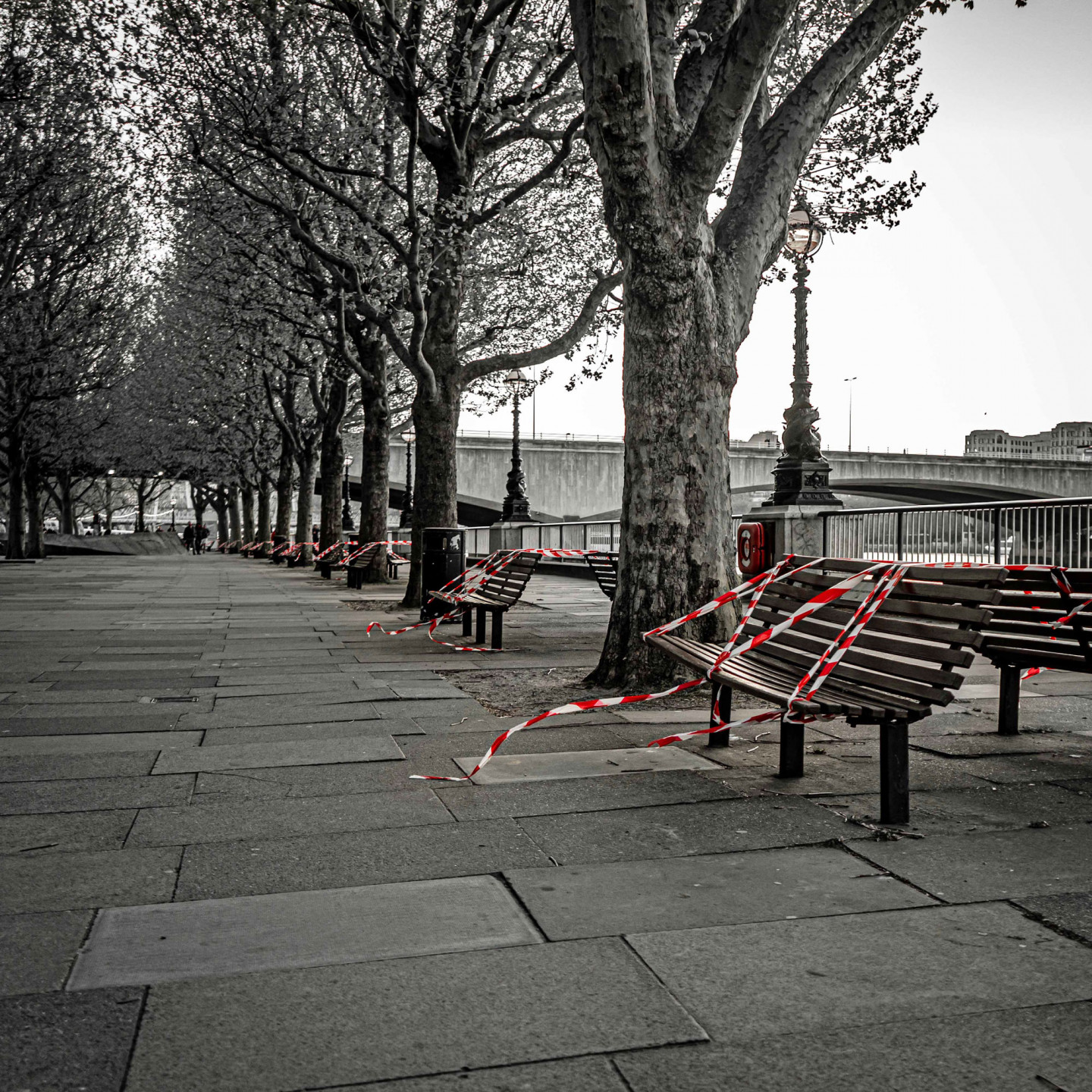 Taped off benches by the Thames. May 13, 5.09pm © Richard Lawrence