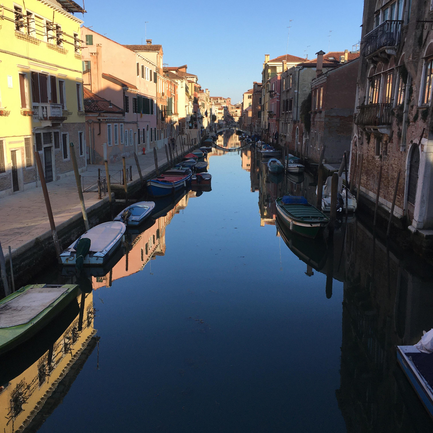 March 2020 Lockdown in Venice, Itlay. Nobody about, and such clear water in the canals that you can spot the fish  © Robin Frood